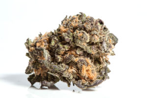 indica grand daddy purp